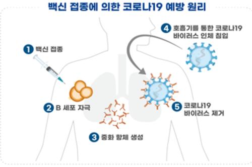 국내 개발 코로나19 백신(1상) 치료제(2상) 임상 승인, 시험 22건 진행