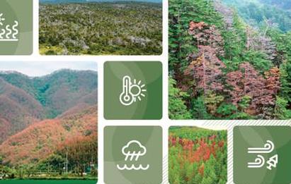 숲 이상 기후변화 적응을 위한 적극적 관리 필요, 산림과학원 현황보고